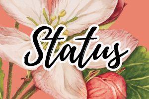 frases e mensagens de status