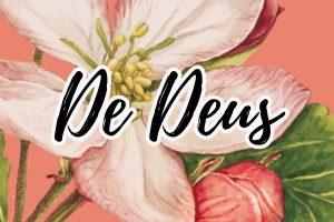 frases e mensagens de deus e evangelicas