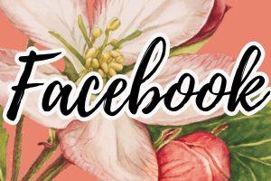 frases e mensagens para facebook