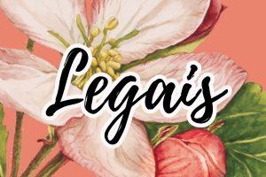 frases e mensagens legais