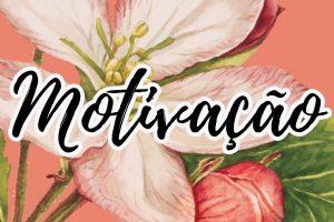 frases e mensagens de motivação